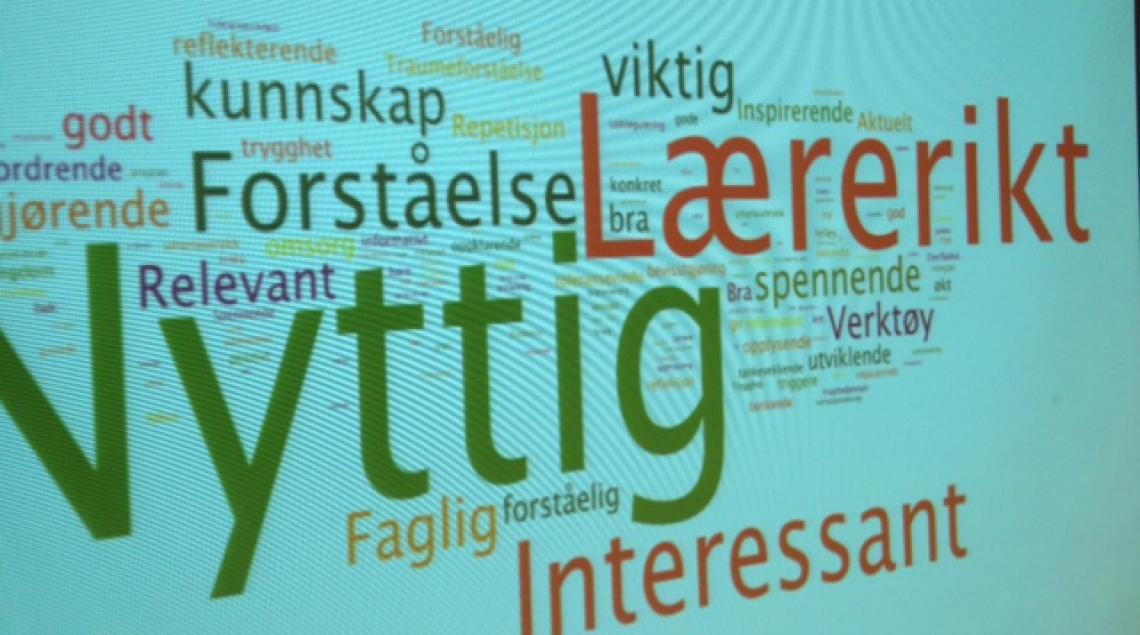 Bildet viser mest brukte ord i beskrivelsen av HandleKraft fra de som har vært med å evaluere programmet