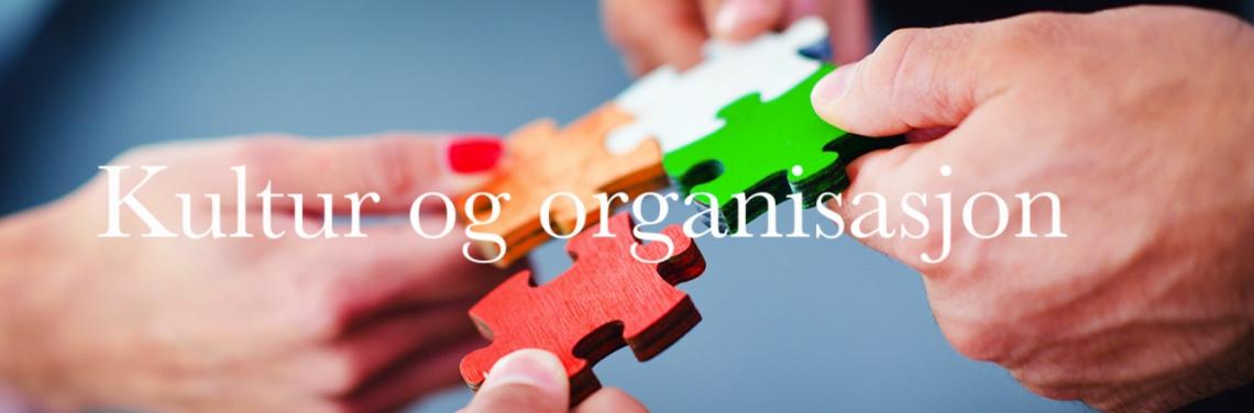 Kultur og organisasjon