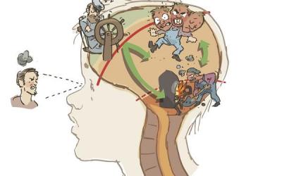 Hjernen formes av bruken