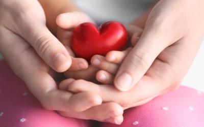 Ja til ros og kjærlighet